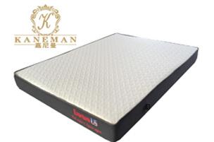 Rollable memory foam mattress